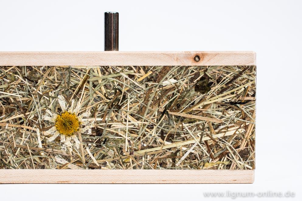 Stifte-Alm Holzsorte Ahorn