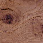 Holz Masereiche